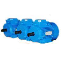 Электродвигатели  асинхронные  трехфазные  общепромышленного  исполнения